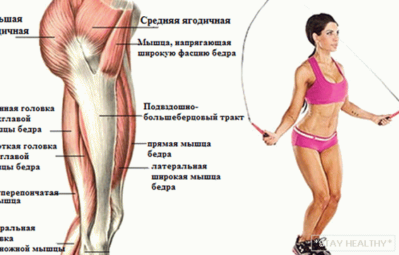 What muscles are trained in jumping rope