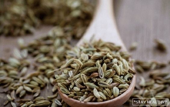 """Secret Fruit"" fragrant garden greens. whatneed to know about the benefits and dangers of dill seeds?"